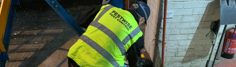 Pestwise Technician